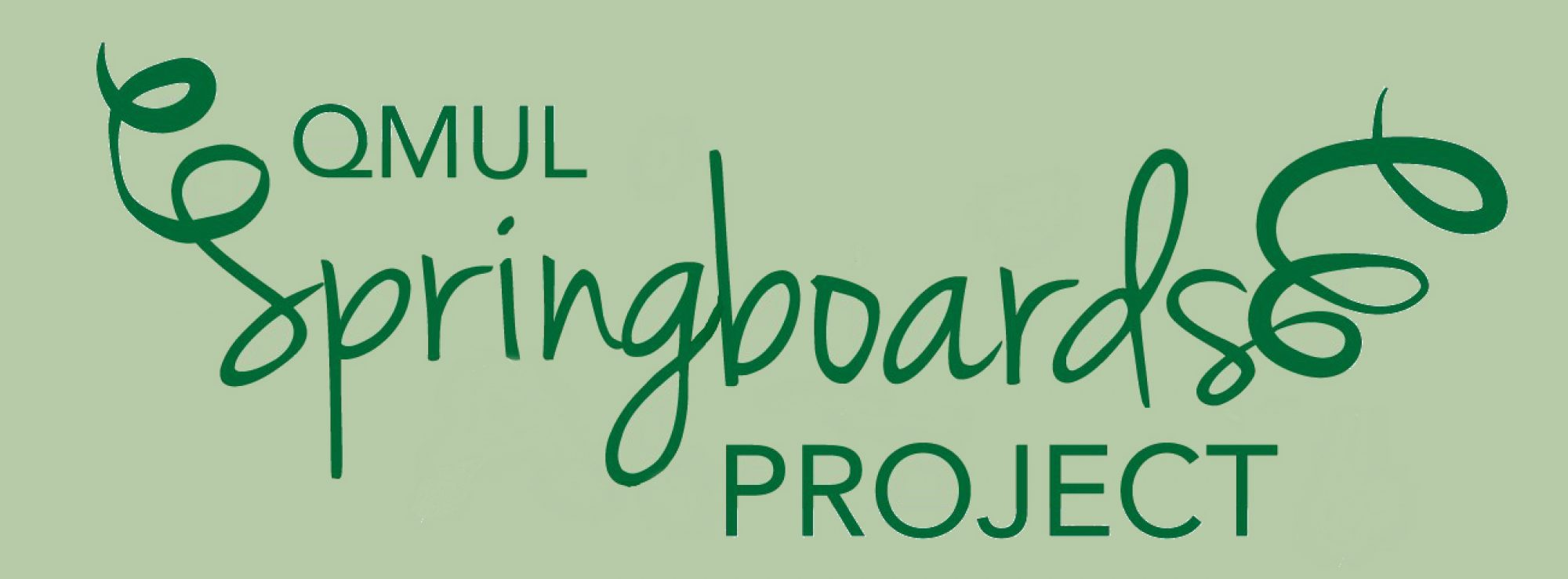 Springboards Project